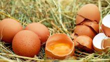 Œufs : les prix plus chers en hiver