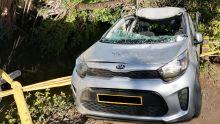 Décès d'un saoudien dans un accident - La jeune veuve : «Il a été pris d'une crise d'asthme au volant»