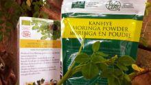 Production locale : le Moringa bientôt sur les marchés français et canadien