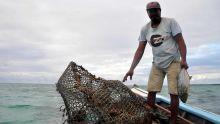 Métier - Ton Chole : «La pêche aux casiers est une pêche responsable»