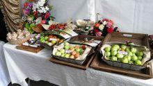 Lancement de trois variétés de pomme d'amour -Mahen Seeruttun : «Elles sont résistantes à la chaleur»
