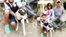 Coup de cœur : Bandit entouré de sa famille