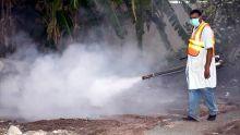 Dengue : 40 cas recencés