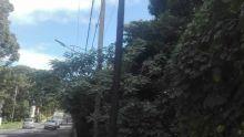 Expansion des réseaux de téléphonie mobile - Le CEB : «Les pylônes de Mauritius Telecom et d'Emtel sont un danger»