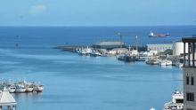 Un pétrolier déverse une tonne d'huile lourde dans le port