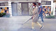 Santé - Dengue : les autorités parlent déjà d'épidémie