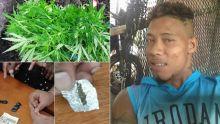À Camp-Ti-Rodrigues : du gandia, de l'héroïne et de la drogue synthétique saisis chez un récidiviste