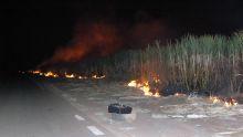 Le feu pour éviter le dépaillage : un cauchemar pour ceux qui vivent aux abords des champs de canne