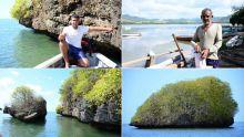 À Vieux-Grand-Port : l'un des plus jeunes charpentiers de marine