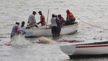 Budget: des pêcheurs protestent contre l'autorisation accordée aux étrangers de pêcher dans nos eaux