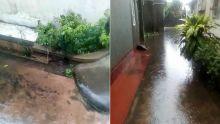 À Castel : une fosse septique déborde à cause des eaux de pluie