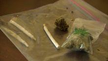 Possession de cannabis : trois suspects dont un gardien de prison et un policier arrêtés