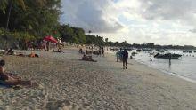 Alerte aux méduses sur la plage de Trou-aux-Biches et Mont-Choisy