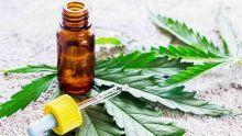 Dev Ramano sur la flexibilité pour le cannabis : «Il faut établir si on optera pour la dépénalisation ou la légalisation ?»