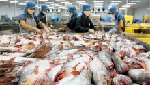Poissons et sous-produits de poisson : les exportations grimpent de plus de 10 %