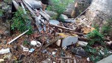 À Port-Louis : un terrain en friche provoque la prolifération de moustiques