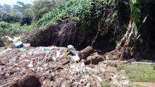 Inondation : la rivière Citron n'est pas nettoyée depuis des années