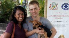 Journée d'adoption spéciale à la MSAW : donner une deuxième chance aux animaux abandonnés