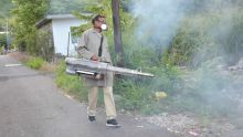 54 cas de dengue enregistrés : les exercices de fumigation se poursuivent à Vallée-de-Prêtres