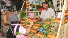 Les tisanes pour combattre certaines maladies : un trésor végétalqui revient en force