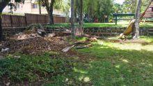 Jardin Balfour : un lieu de détente ombragé