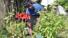 Soodesh Greedharree : un jardinier aux doigts fleuris