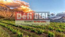 Offre exclusive : cap sur Cape Town