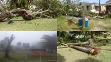 Agalega : le grand nettoyage après le passage de la tempête Alcide