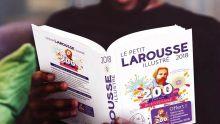 Petit Larousse illustré 2020 : les nouveaux mots entrants dans la prochaine édition