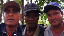 Fakir - conditions de travail difficiles pour les laboureurs de Bel-Ombre