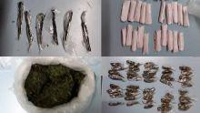 Grand-Baie : du cannabis et du haschich saisis chez un individu qui prend la fuite à l'arrivée de l'Adsu