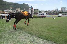 Hippisme : le jockey Robert Khathi se remet de sa chute dans la Duchesse
