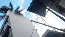 Camp-Yoloff : un cocotier tombe sur une maison