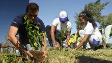 Défi Vert en Plein Air : campagne lancée à Le-Bouchon