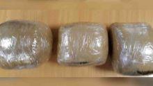 A l'aéroport : 6 kg de cannabis saisis sur un Indien