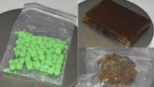 Poste centrale : saisie de Rs 900 000 de drogues grâce au chien renifleur Otto