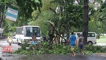 Fakir s'en est allé : aucune alerte cyclonique en vigueur à Maurice