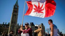 Canada : les députés votent la légalisation du cannabis