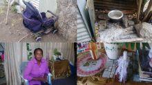 Accident de la route - Chantal Palmyre : «Ma petite-fille doit vivre avec un tube dans la tête»