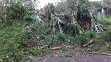 Rodrigues : la foudre cause d'importants dégâts matériels dans la région de La Ferme