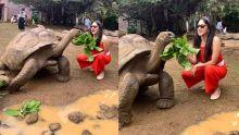 Bollywood : l'actrice Kiara Advani en vacances à Maurice et nourrit une tortue