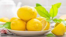 Exportation de limons : Rodrigues revoit sa stratégie