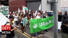 Port-Louis : un manifestant arrêté avec du cannabis alors qu'il participait à la marche pour la légalisation de samedi