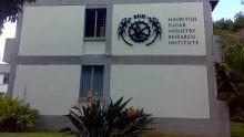 Au MSIRI : une hausse salariale rétroactive de Rs 25 000 pour le directeur