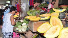 Prix des légumes : Kreepalloo Sunghoon prévoit une hausse d'au moins 15 %