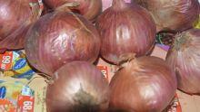 Un cuisinier de la SMF interpellé pour possession de…sept oignons