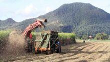 Industrie cannière - Mauritius Sugar Ltd : proposition de la dernière chance