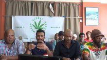 Kolektif 420 : «Le combat contre la drogue est perdu»