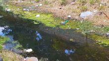 Des rivières dans un sale état