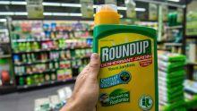 USA : premier procès sur de possibles effets cancérigènes du RoundUp